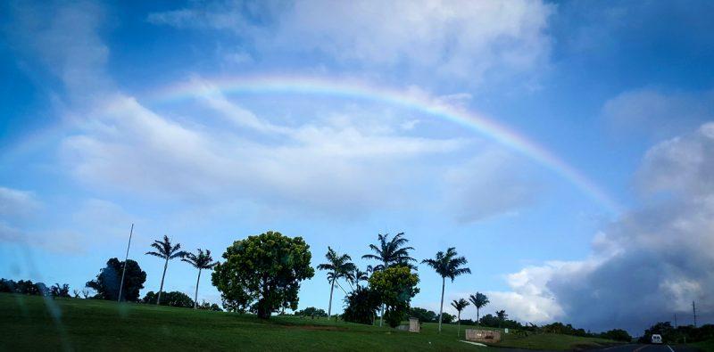Hawaii_June_2016_0146